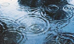 rainy001-486x290