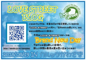 LSブログPOP最終稿-001